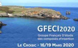 HTDS participe à GFECI 2020