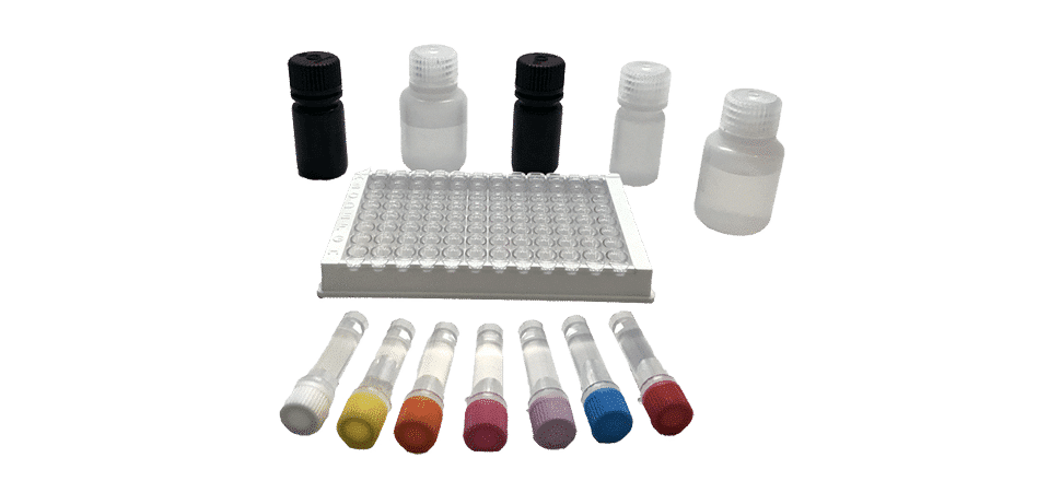 Kit de test ELISA Mycotoxines