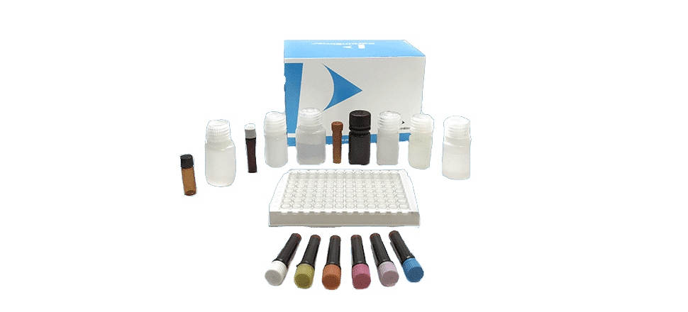 Kit de test Antibiotique Beta-Lactam